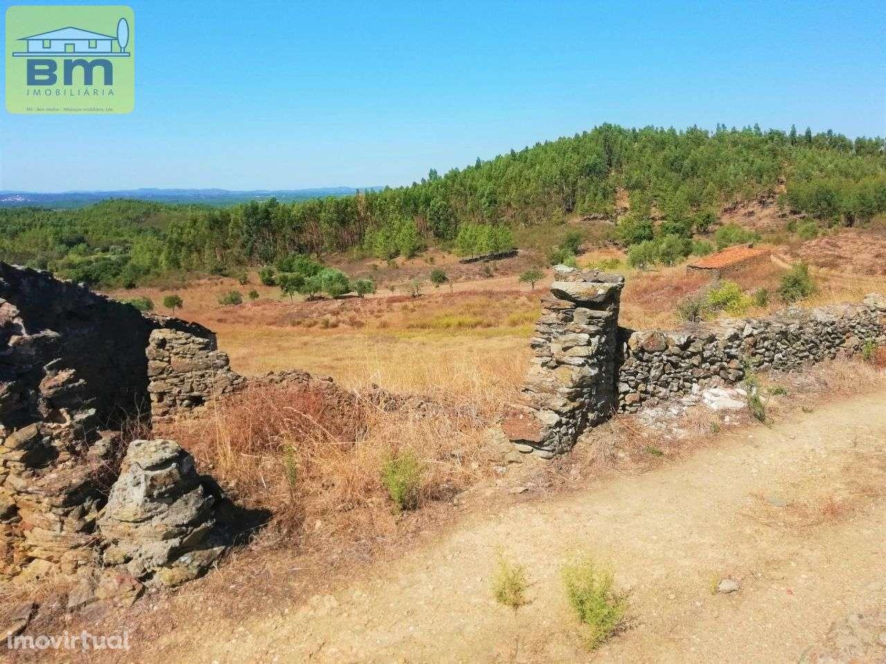 Quintas e herdades para comprar, Fratel, Vila Velha de Rodão, Castelo Branco - Foto 8