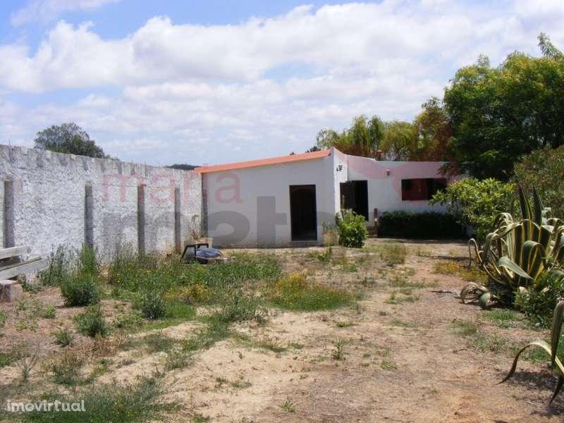 Quintas e herdades para comprar, Lourinhã e Atalaia, Lourinhã, Lisboa - Foto 8
