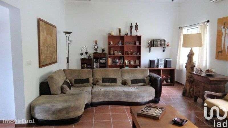 Quintas e herdades para comprar, Chamusca e Pinheiro Grande, Santarém - Foto 11