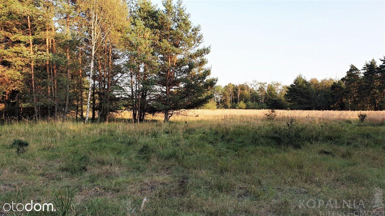 Działka sąsiadująca z lasem, szeroka