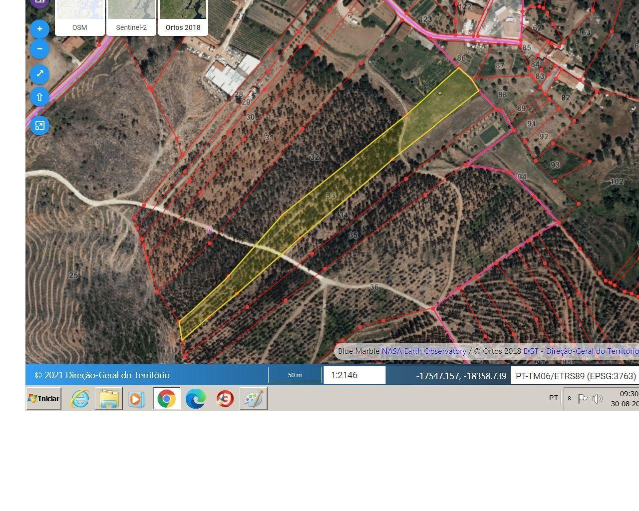 terreno com viabilidade construção e floresta