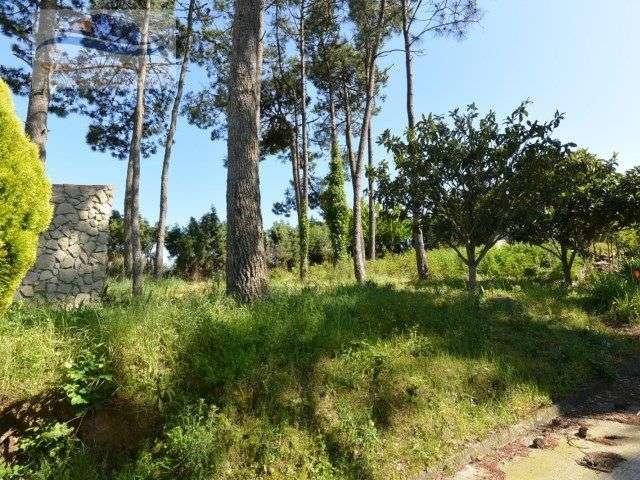 Quintas e herdades para comprar, Alfeizerão, Leiria - Foto 3