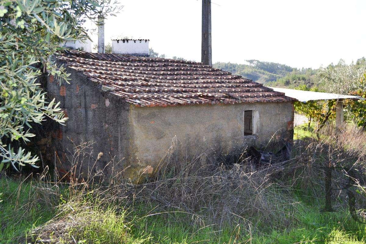 Quintas e herdades para comprar, São Pedro do Esteval, Castelo Branco - Foto 30