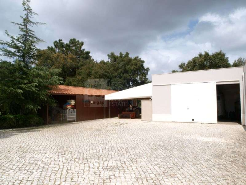 Quintas e herdades para comprar, Quinta do Anjo, Setúbal - Foto 14