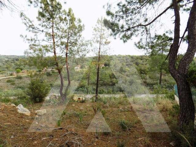 Terreno para comprar, Paderne, Faro - Foto 6