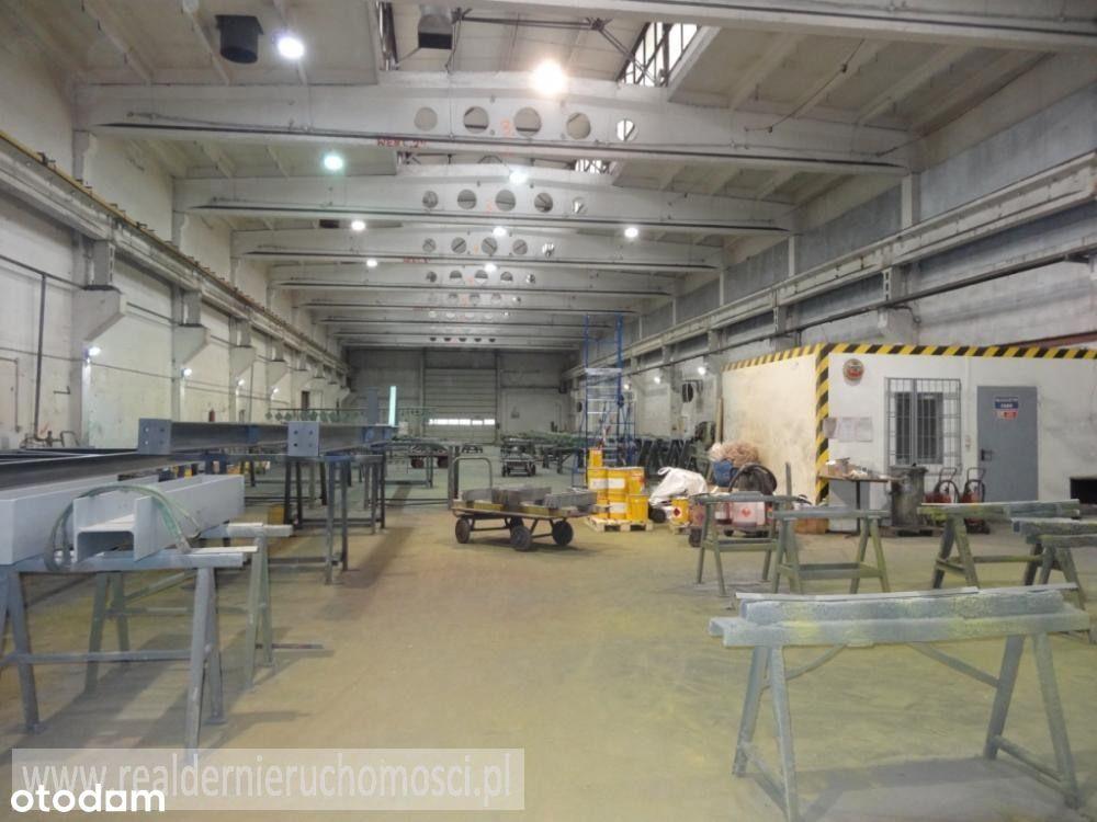 Hala/Magazyn, 12 875 m², Zielona Góra