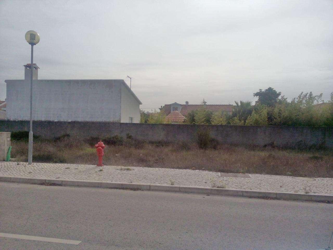 Terreno para comprar, Azeitão (São Lourenço e São Simão), Setúbal - Foto 4