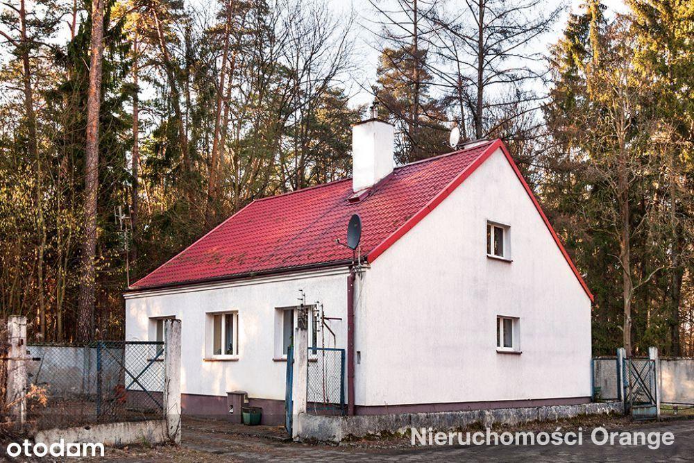 Lokal użytkowy, 1 282 m², Olsztyn