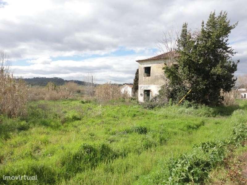 Quintas e herdades para comprar, São Miguel do Rio Torto e Rossio Ao Sul do Tejo, Abrantes, Santarém - Foto 2