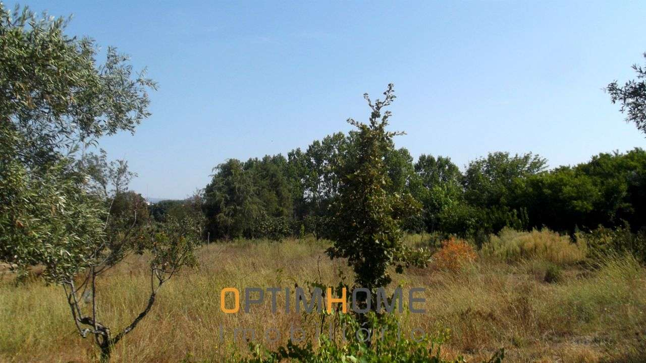 Quintas e herdades para comprar, Caria, Belmonte, Castelo Branco - Foto 28