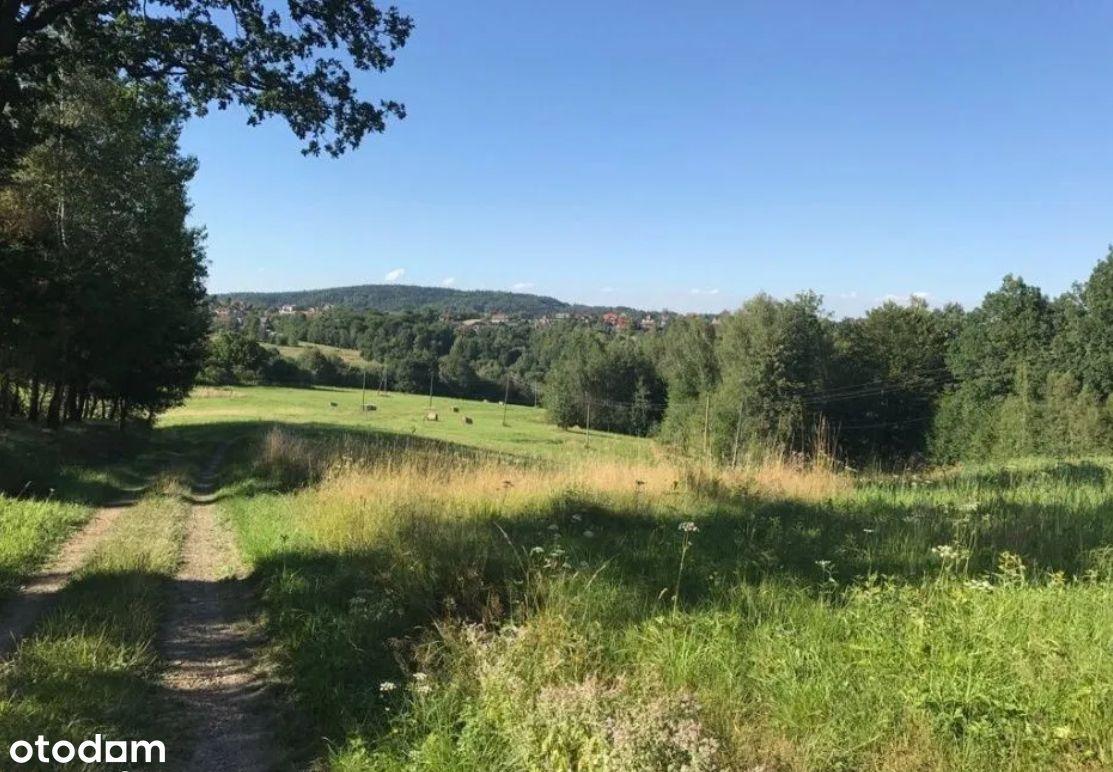 Gospodarstwo rolne 14,03ha - 35km od Krakowa