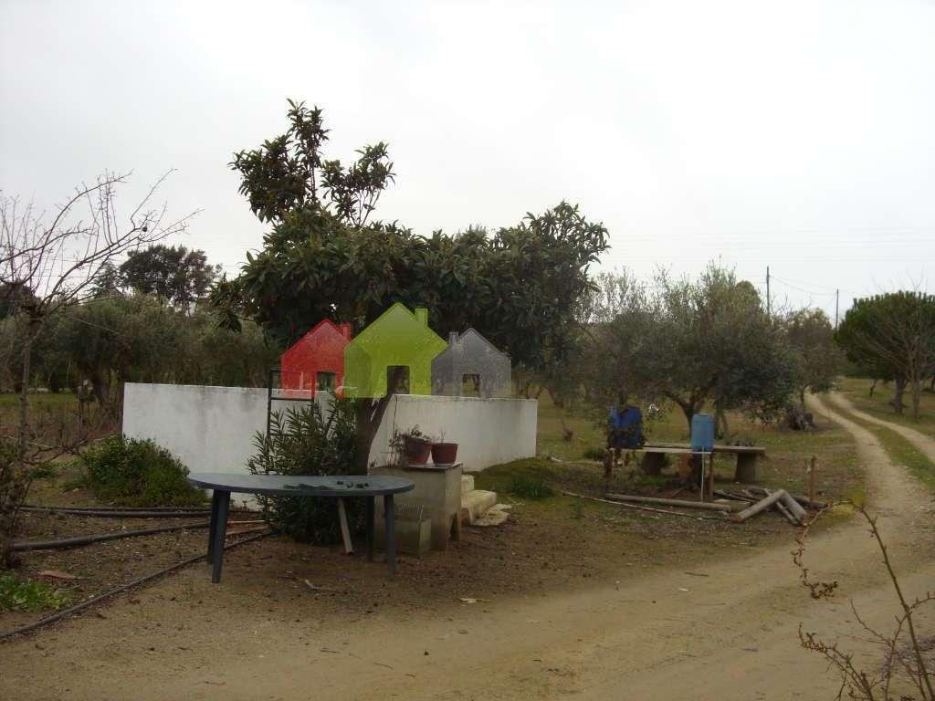 Terreno para comprar, Serpa (Salvador e Santa Maria), Beja - Foto 10