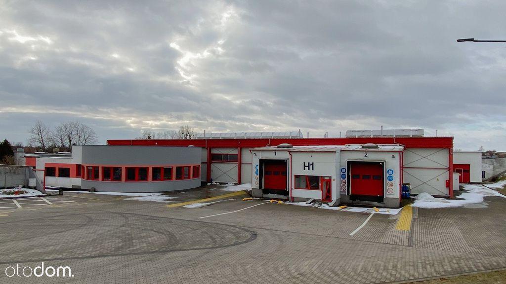 Hala/Magazyn, 9 372 m², Sztum