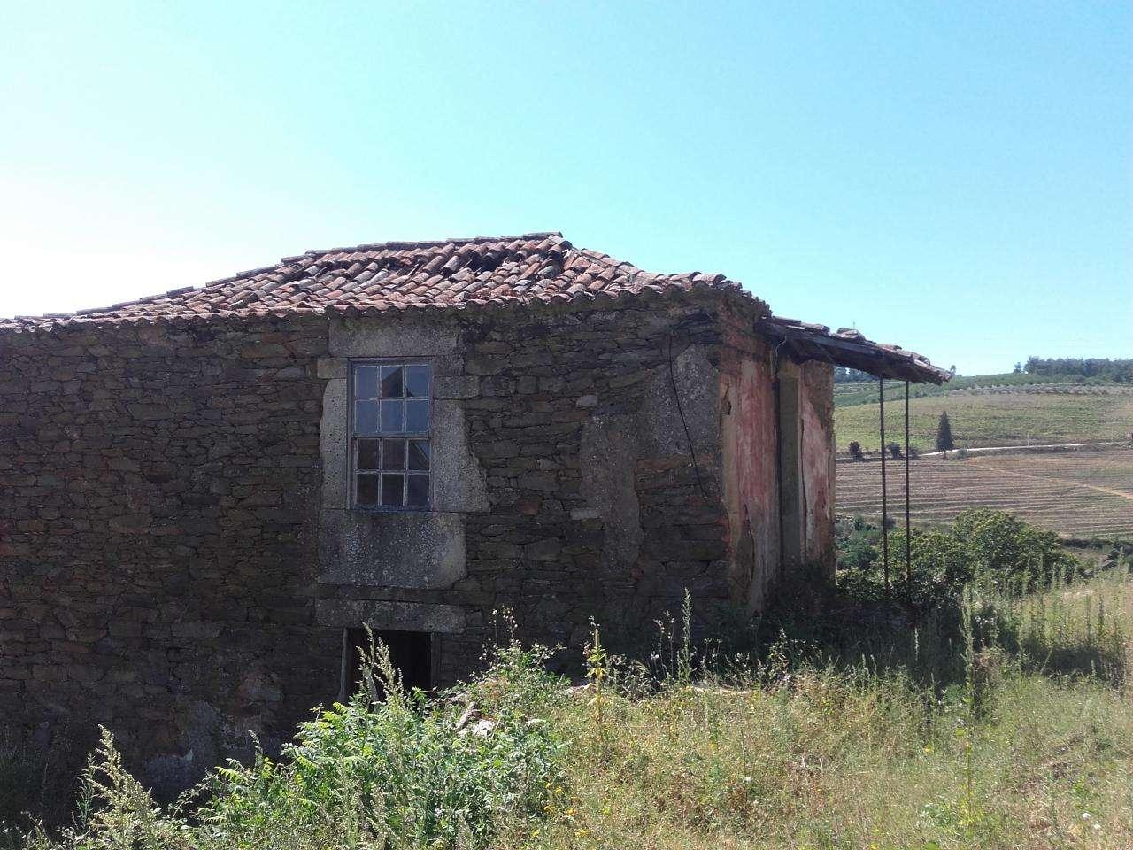 Quintas e herdades para comprar, Armamar - Foto 15