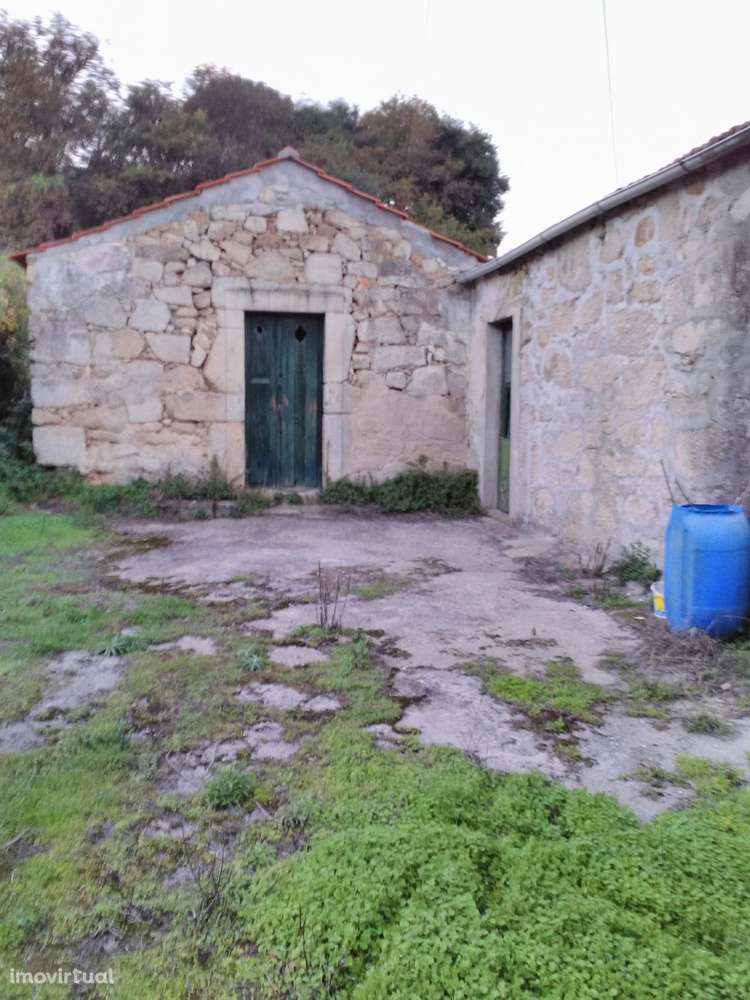 Quintas e herdades para comprar, Oliveira do Douro, Vila Nova de Gaia, Porto - Foto 7