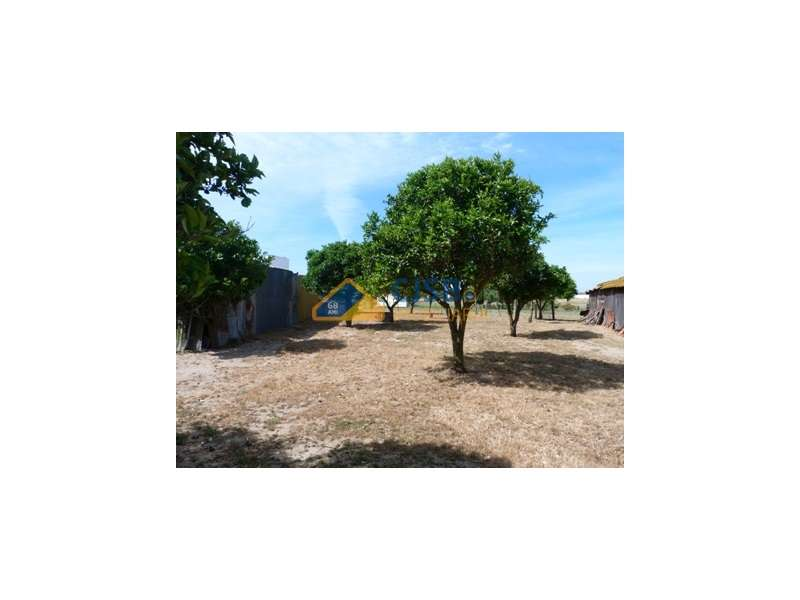 Quintas e herdades para comprar, Samora Correia, Benavente, Santarém - Foto 44