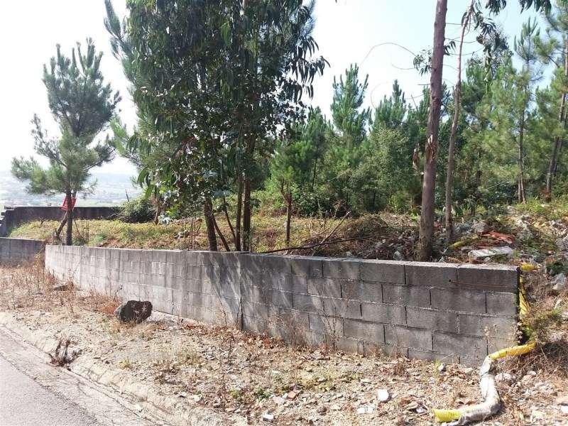 Terreno para comprar, Milhazes, Vilar de Figos e Faria, Braga - Foto 5