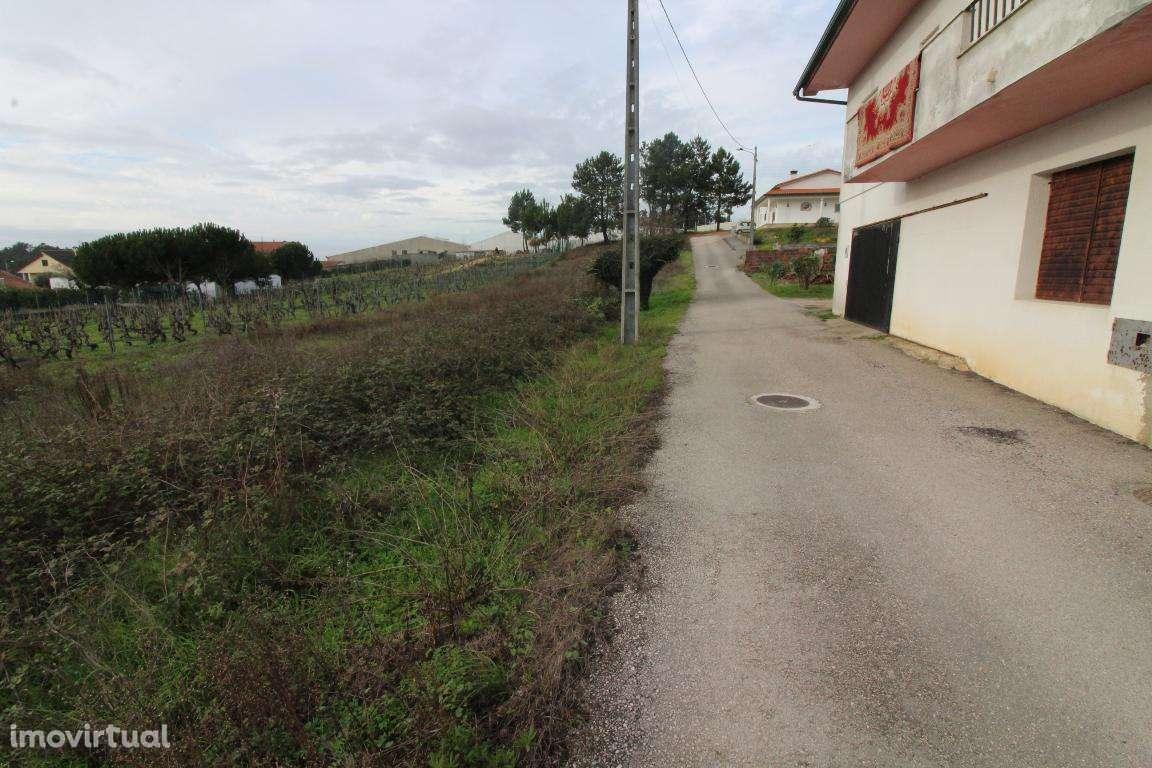 Terreno para comprar, Leiria, Pousos, Barreira e Cortes, Leiria - Foto 5