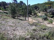 Terreno para comprar, Oleiros-Amieira, Oleiros, Castelo Branco - Foto 11