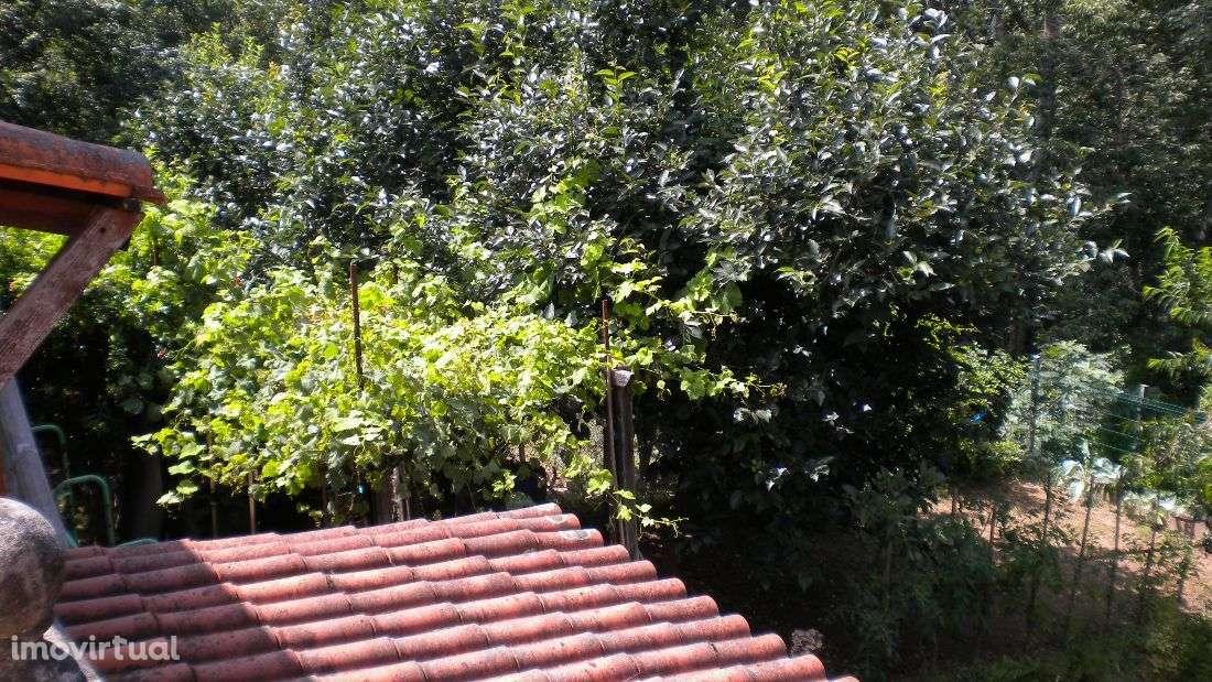 Moradia para comprar, Valongo do Vouga, Águeda, Aveiro - Foto 14