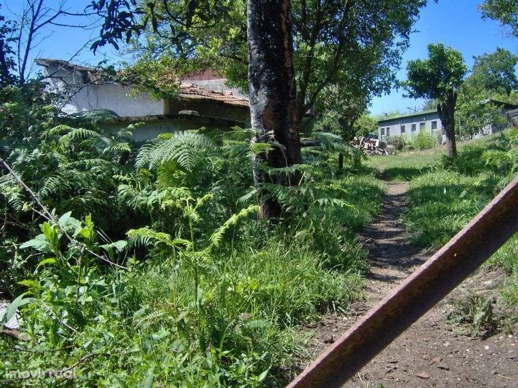 Terreno para comprar, Ruílhe, Braga - Foto 5