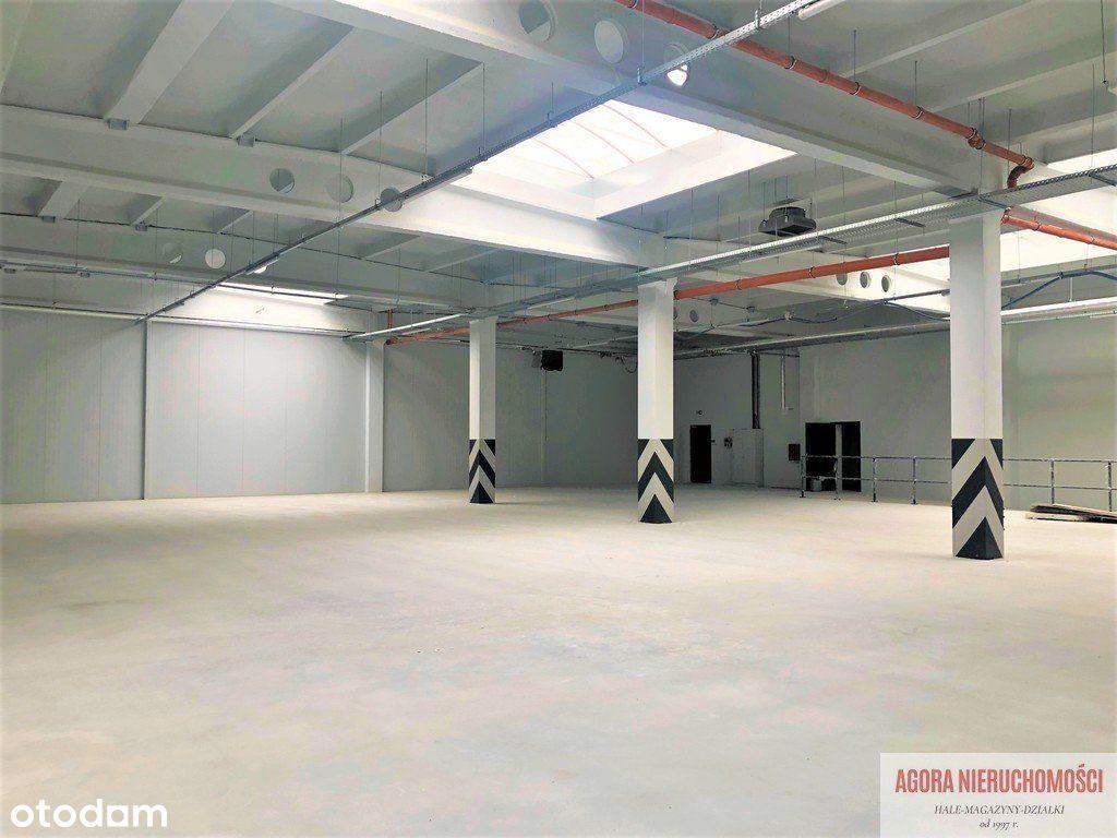 Hala Produkcja Magazyn 645 m2, Rybitwy