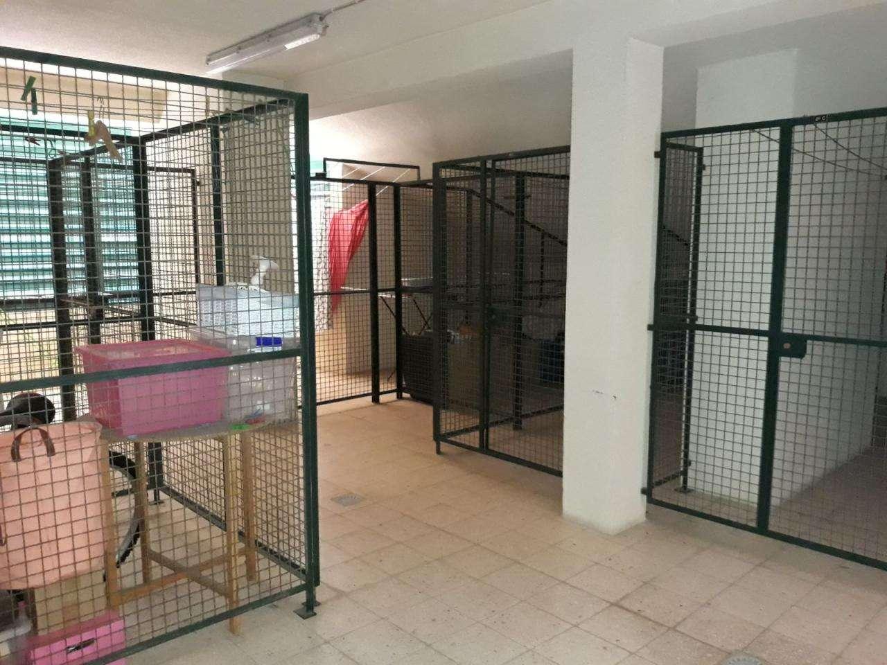 Apartamento para comprar, Carnaxide e Queijas, Lisboa - Foto 10