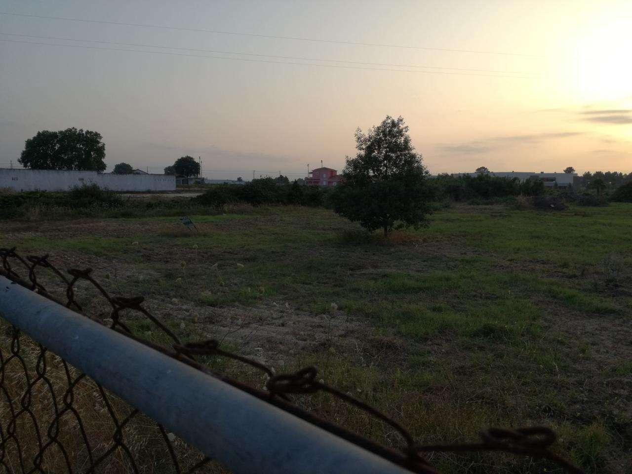 Terreno para comprar, Marinhais, Santarém - Foto 6