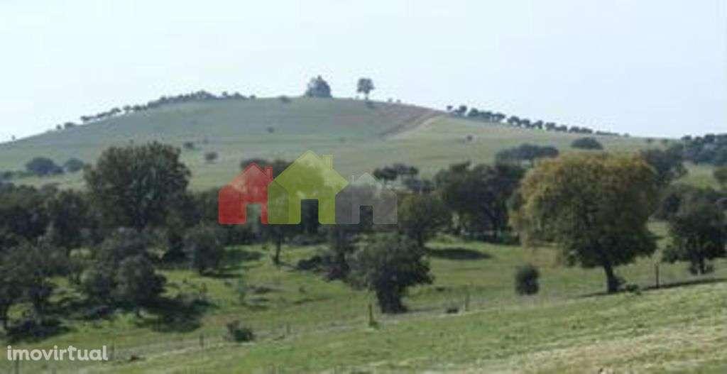 Quintas e herdades para comprar, Alcaria Ruiva, Mértola, Beja - Foto 1