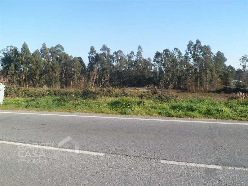 Terreno para comprar, Oliveira, Braga - Foto 7