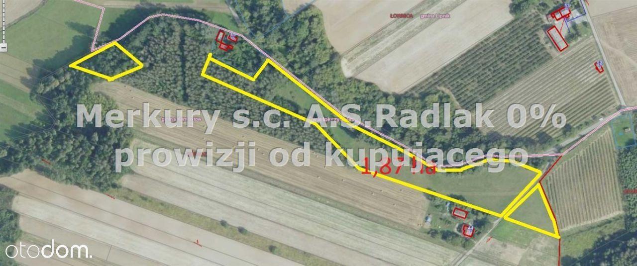 Działka, 18 667 m², Beradz