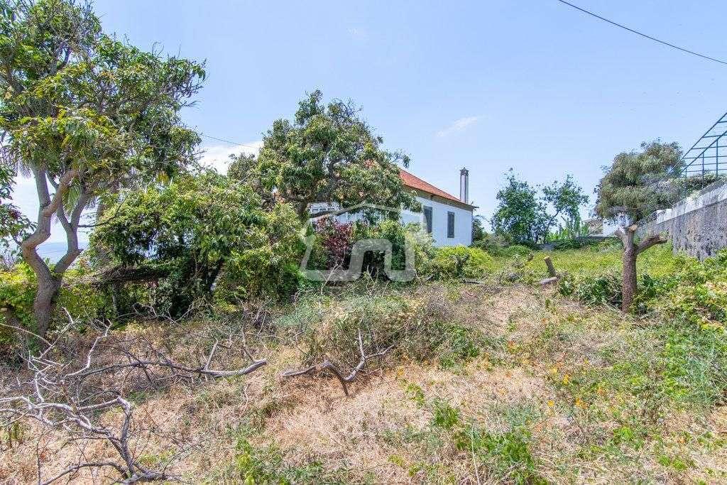 Quintas e herdades para comprar, São Martinho, Ilha da Madeira - Foto 17