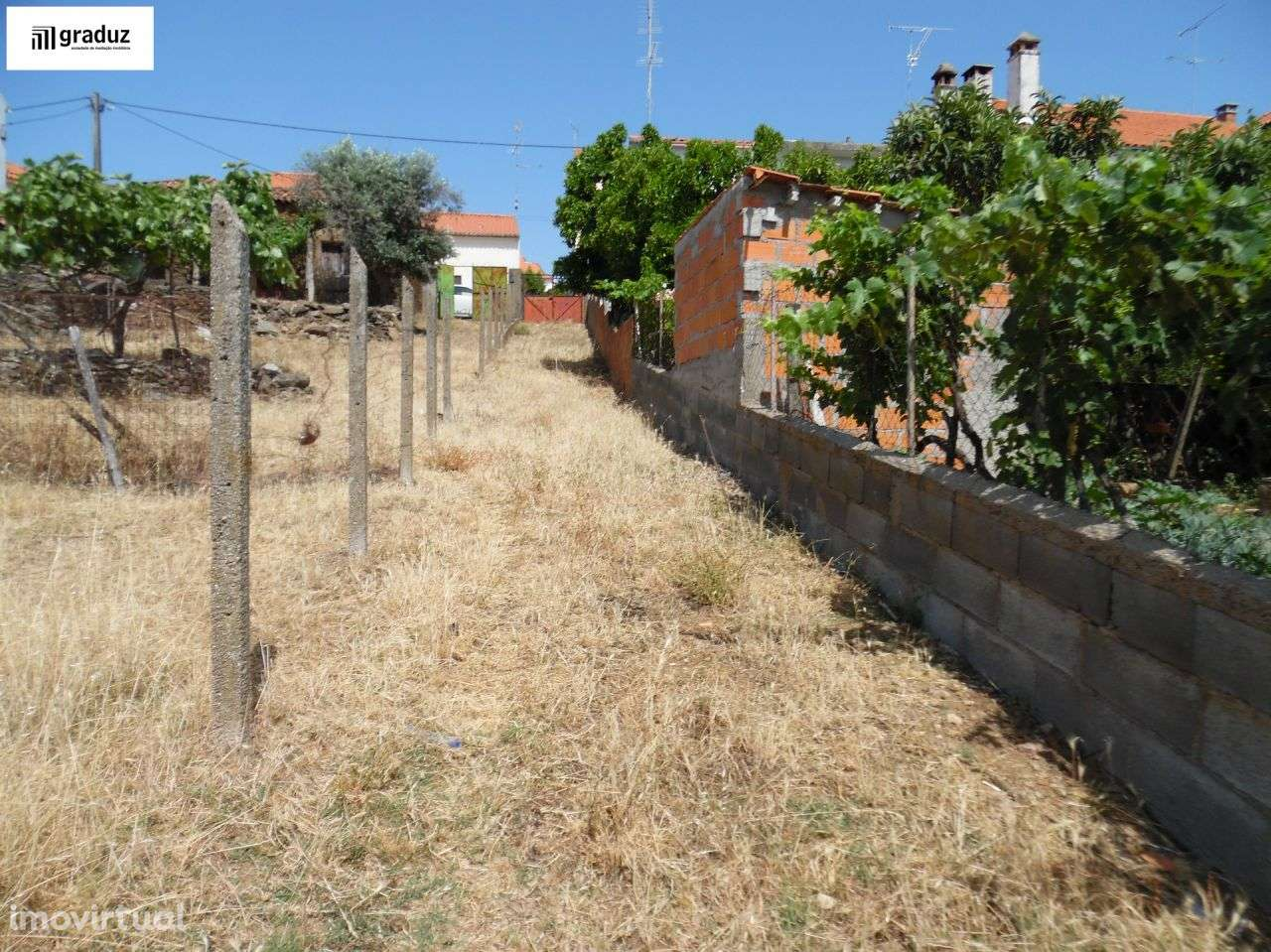 Terreno para comprar, Escalos de Baixo e Mata, Castelo Branco - Foto 9