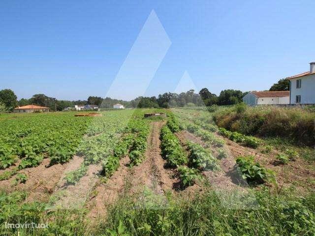 Terreno para comprar, Palhaça, Aveiro - Foto 2