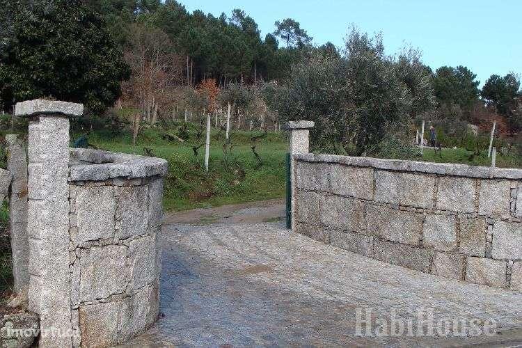 Quintas e herdades para comprar, Povolide, Viseu - Foto 3
