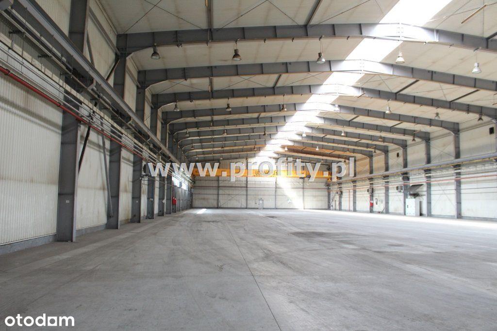Budynek produkcyjno magazynowy 4273m² suw 12T