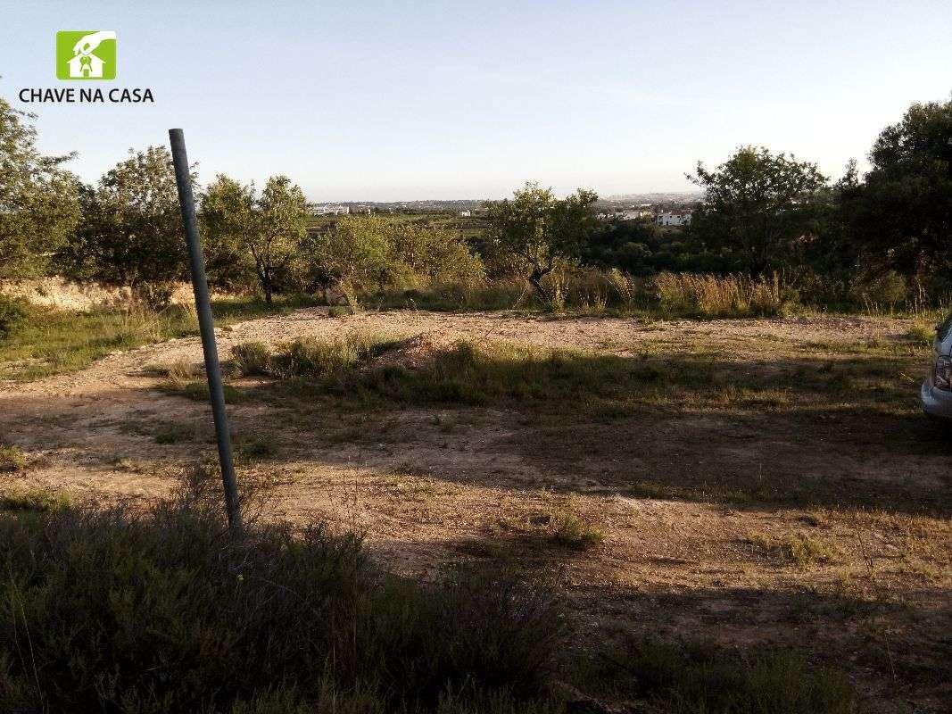 Terreno para comprar, Conceição e Estoi, Faro - Foto 11