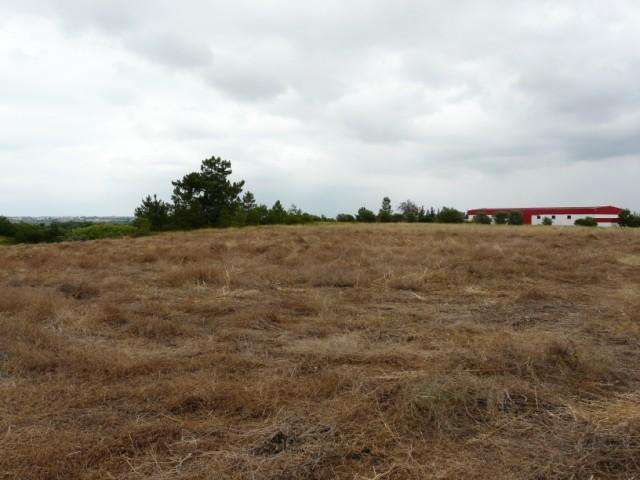 Terreno para comprar, Benavente - Foto 2