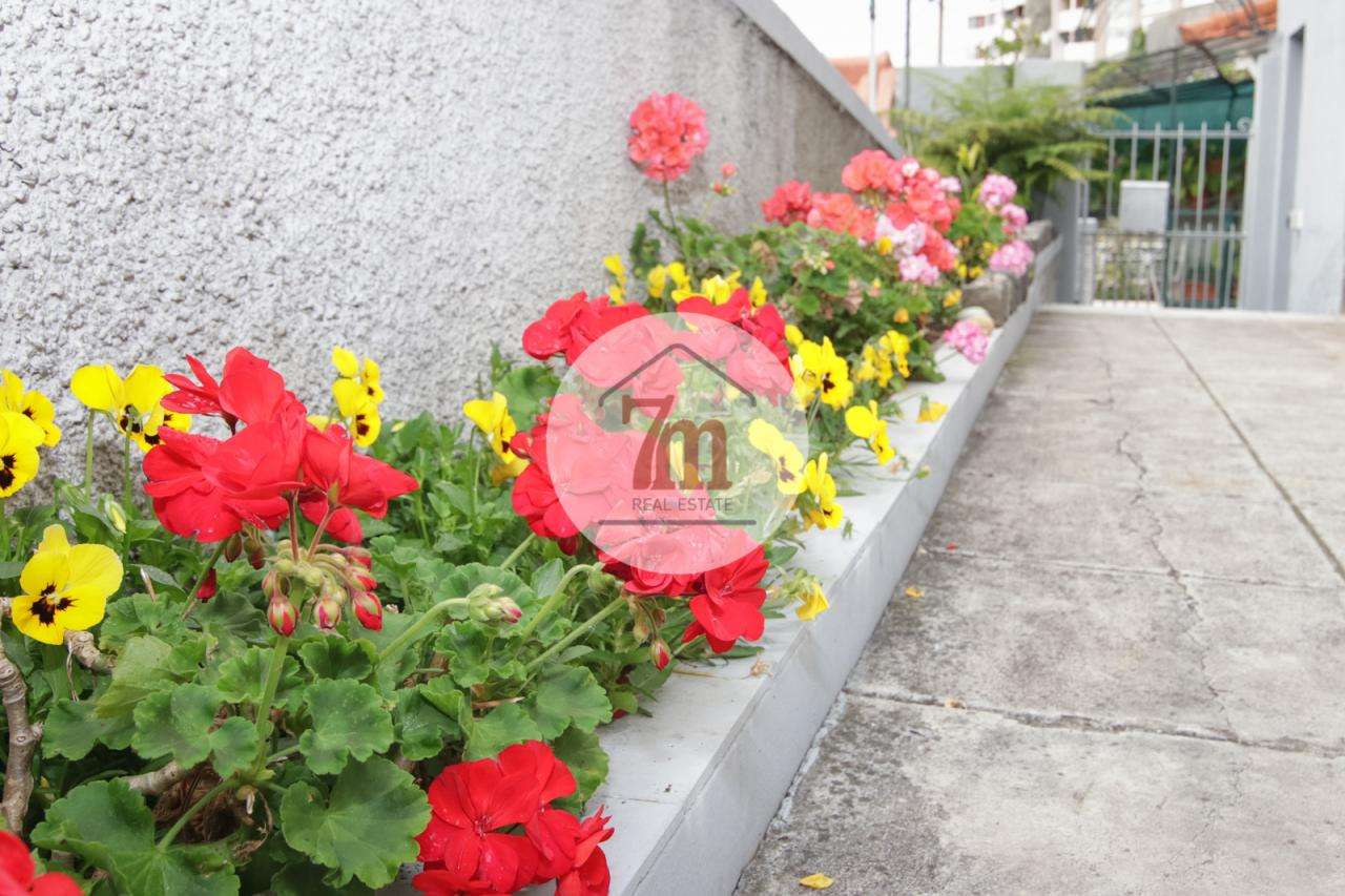 Moradia para comprar, Santa Luzia, Ilha da Madeira - Foto 17