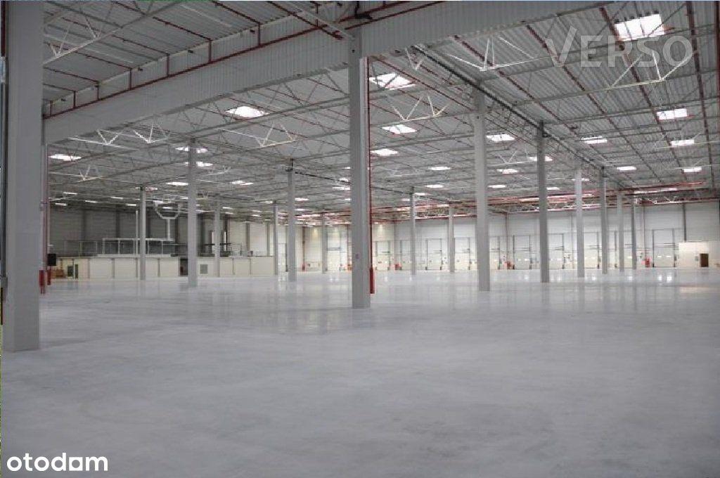 Magazyn/warehouse 9450 sqm. We speak english.
