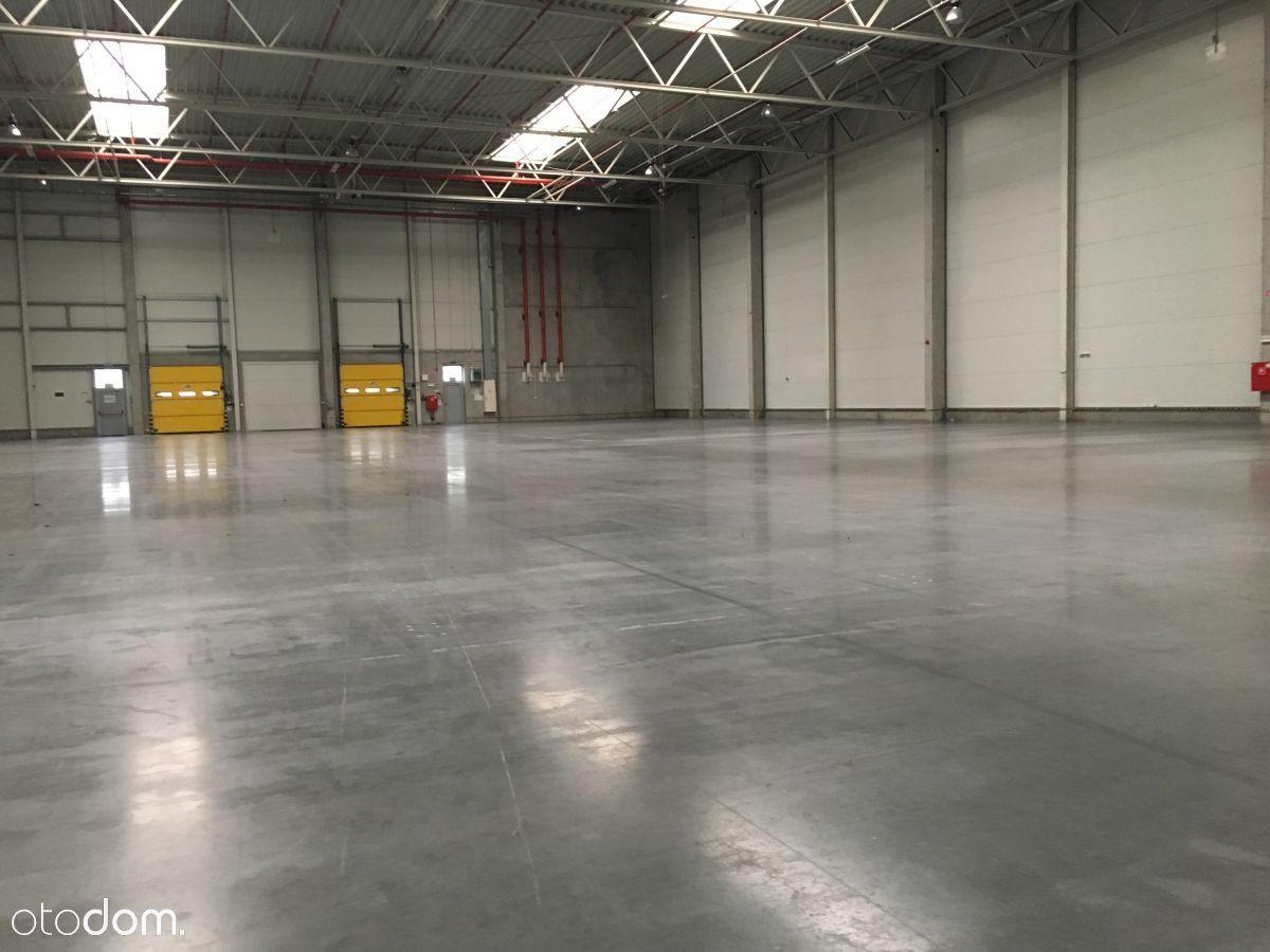 Hala/Magazyn, 2 650 m², Gliwice