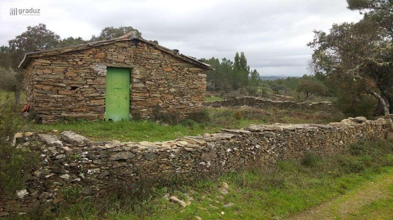 Quintas e herdades para comprar, Benquerenças, Castelo Branco - Foto 4