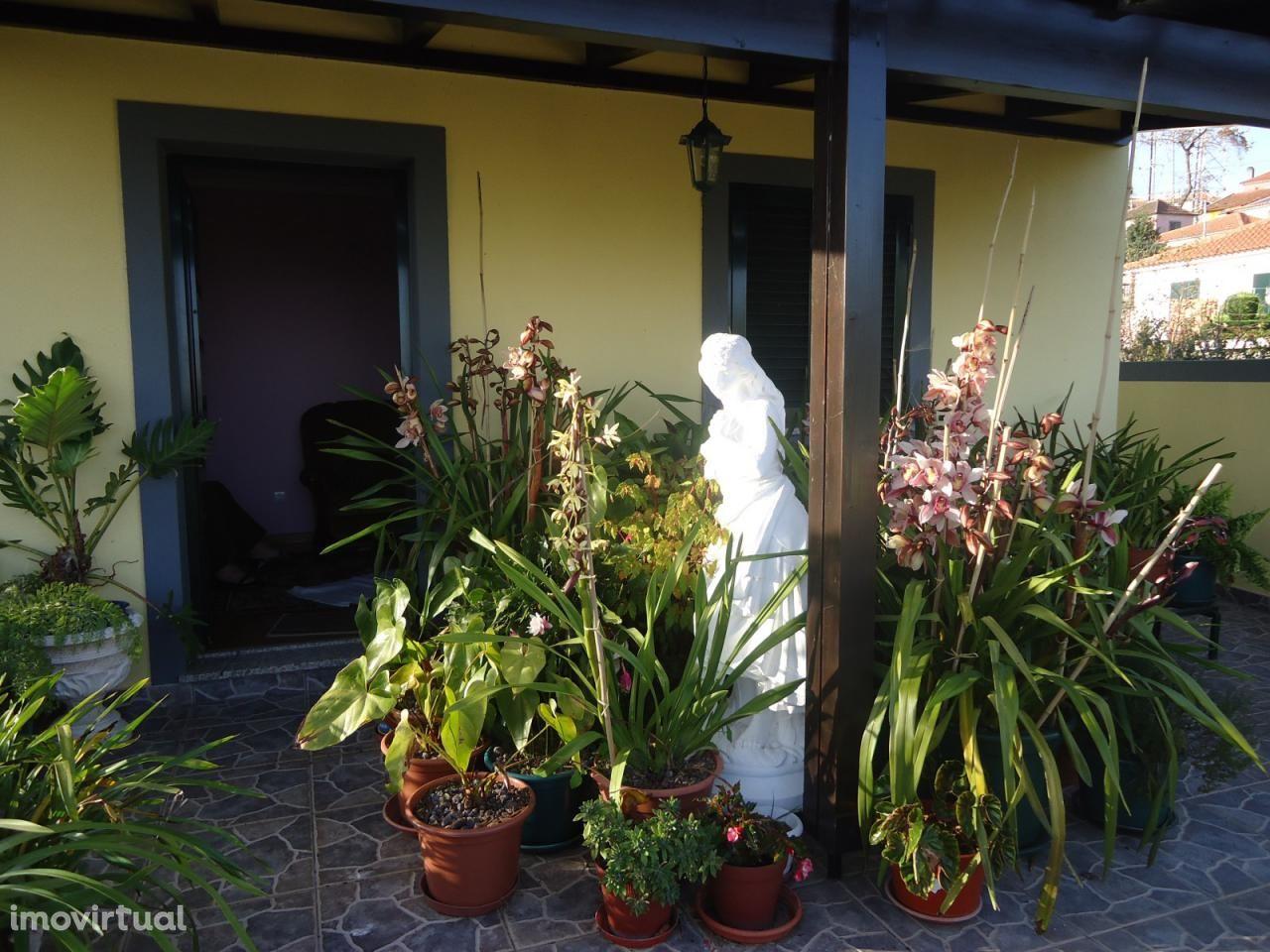 Moradia para comprar, Camacha, Santa Cruz, Ilha da Madeira - Foto 6