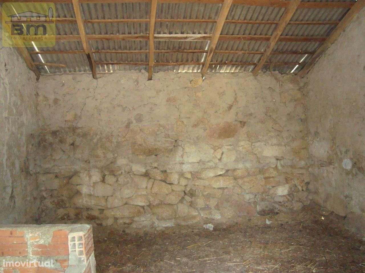 Quintas e herdades para comprar, Almaceda, Castelo Branco - Foto 41