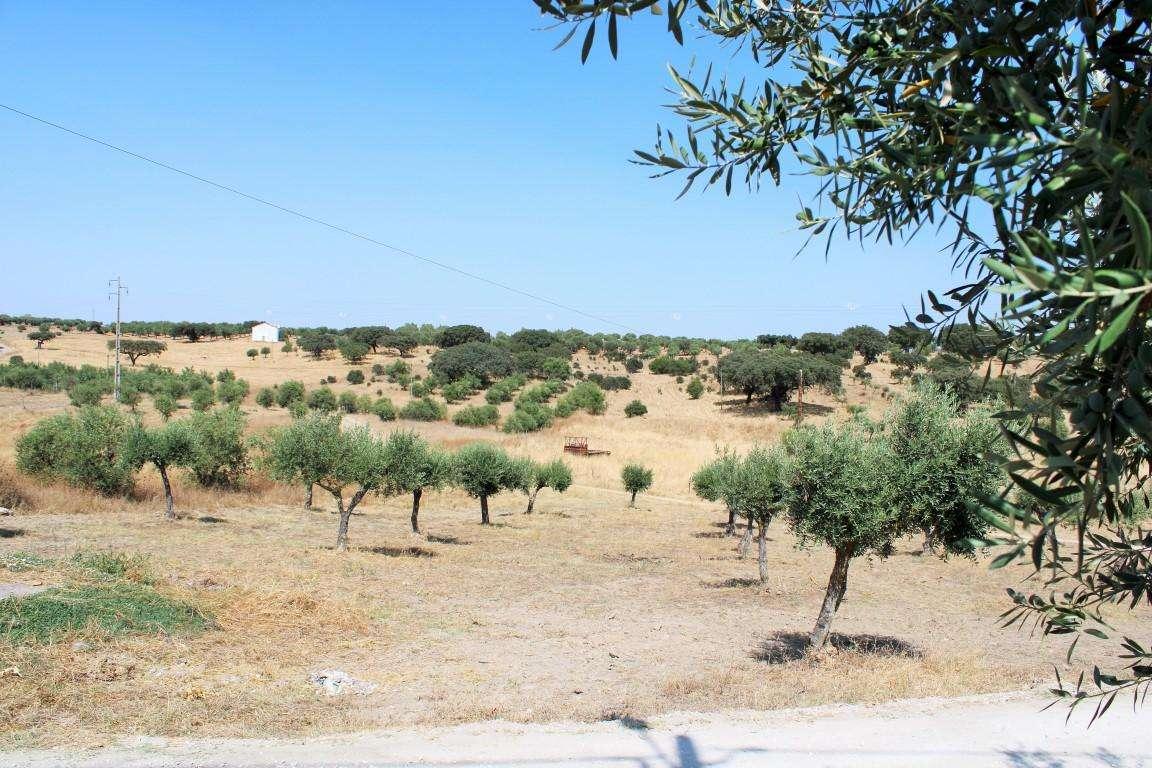 Quintas e herdades para comprar, Santo António (Capelins), Évora - Foto 54