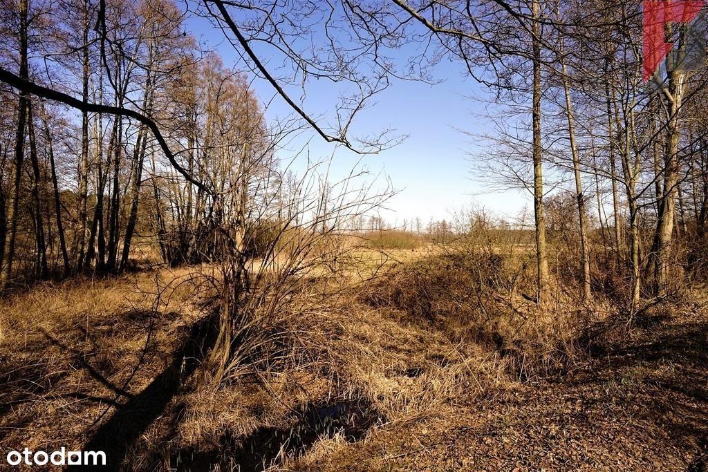 Duży grunt idealny na stawy hodowlane Jabłonna