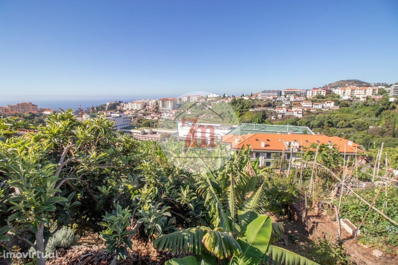 Moradia T3 com terreno São Roque Funchal