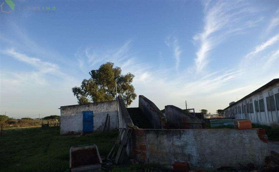 Quintas e herdades para comprar, Alcochete - Foto 6
