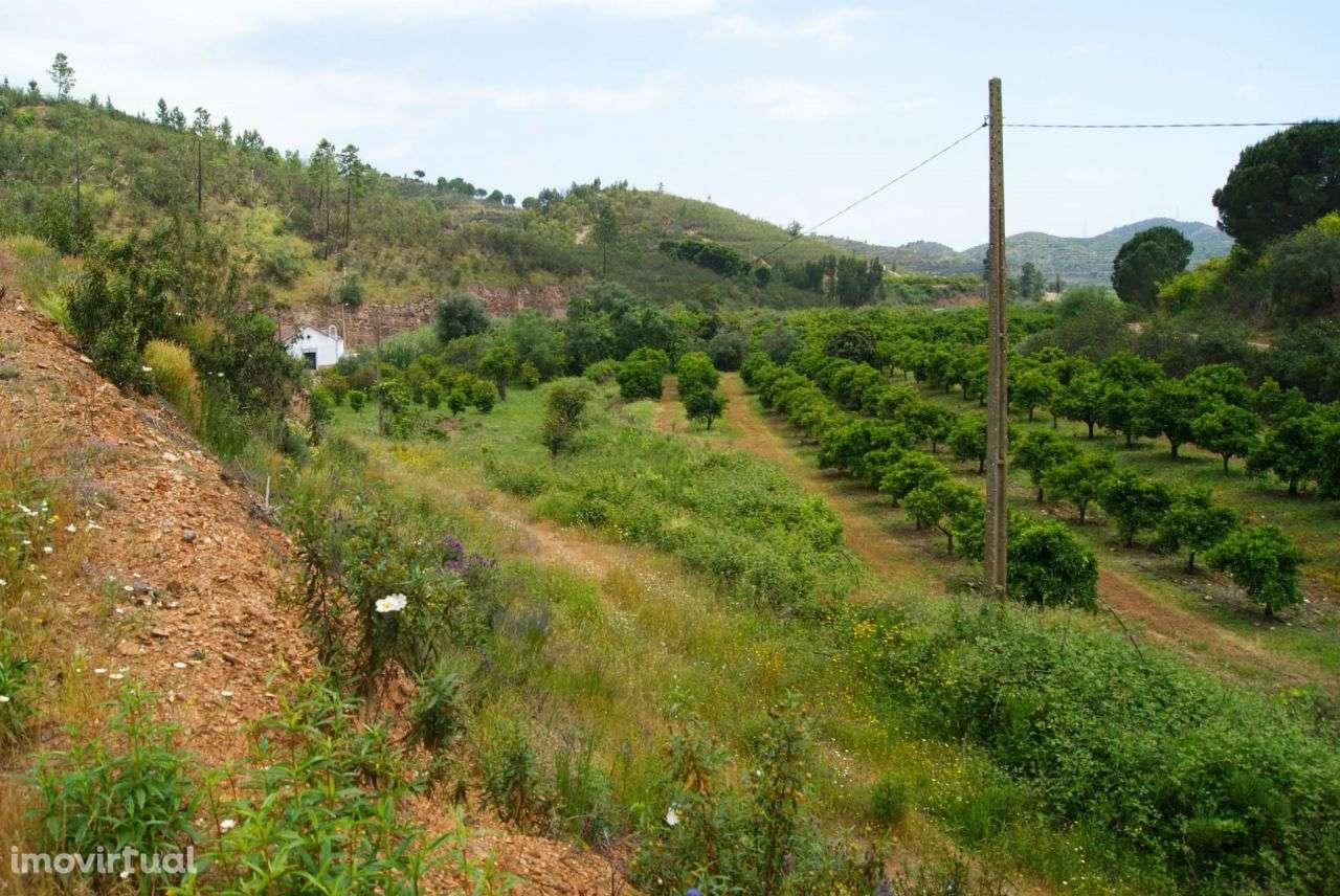 Terreno para comprar, Alferce, Monchique, Faro - Foto 21