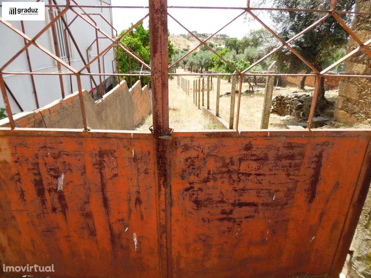 Terreno para comprar, Escalos de Baixo e Mata, Castelo Branco - Foto 3